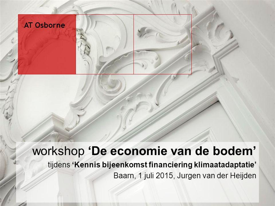 workshop 'De economie van de bodem' tijdens 'Kennis bijeenkomst financiering klimaatadaptatie' Baarn, 1 juli 2015, Jurgen van der Heijden AT Osborne