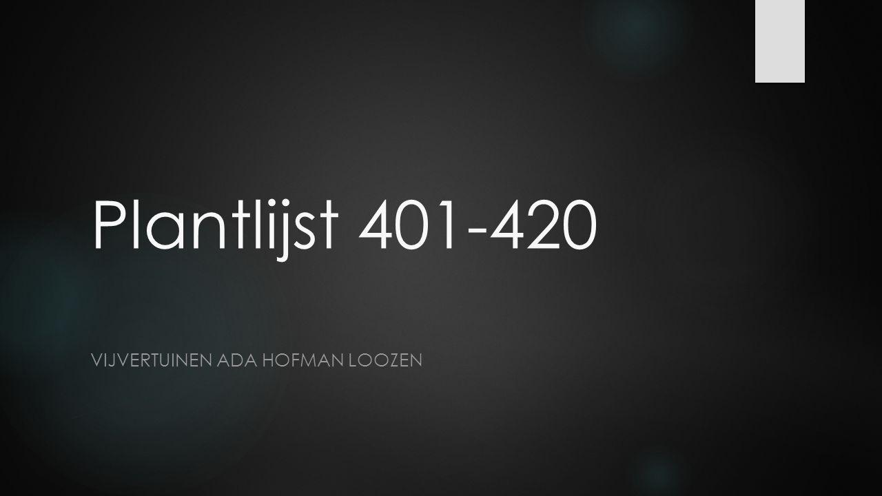 Plantlijst 401-420 VIJVERTUINEN ADA HOFMAN LOOZEN