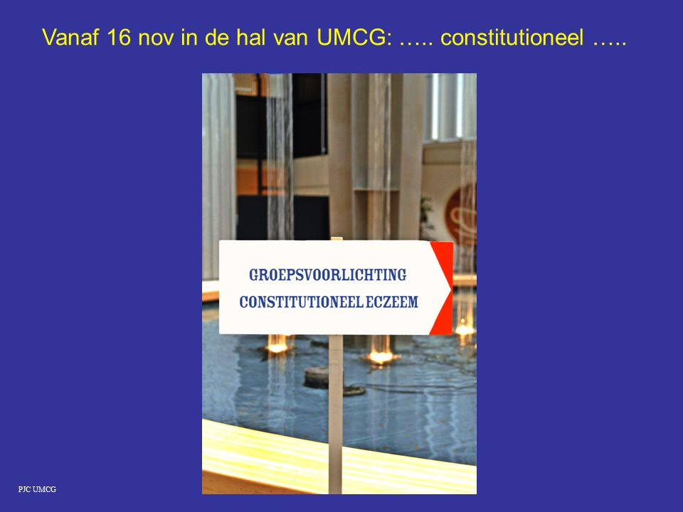 PJC UMCG Vanaf 16 nov in de hal van UMCG: ….. constitutioneel …..