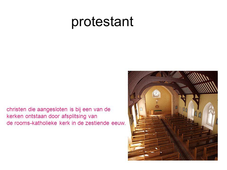 protestant christen die aangesloten is bij een van de kerken ontstaan door afsplitsing van de rooms-katholieke kerk in de zestiende eeuw.