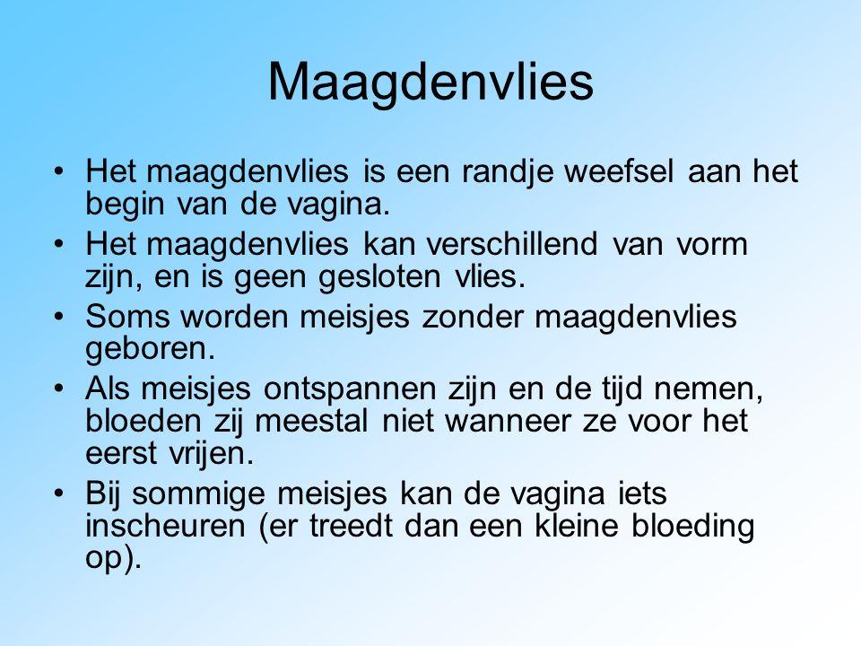 Maagdenvlies Het maagdenvlies is een randje weefsel aan het begin van de vagina. Het maagdenvlies kan verschillend van vorm zijn, en is geen gesloten