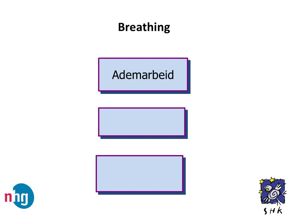 Ademarbeid Breathing