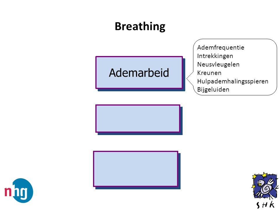 Ademarbeid Ademfrequentie Intrekkingen Neusvleugelen Kreunen Hulpademhalingsspieren Bijgeluiden Breathing