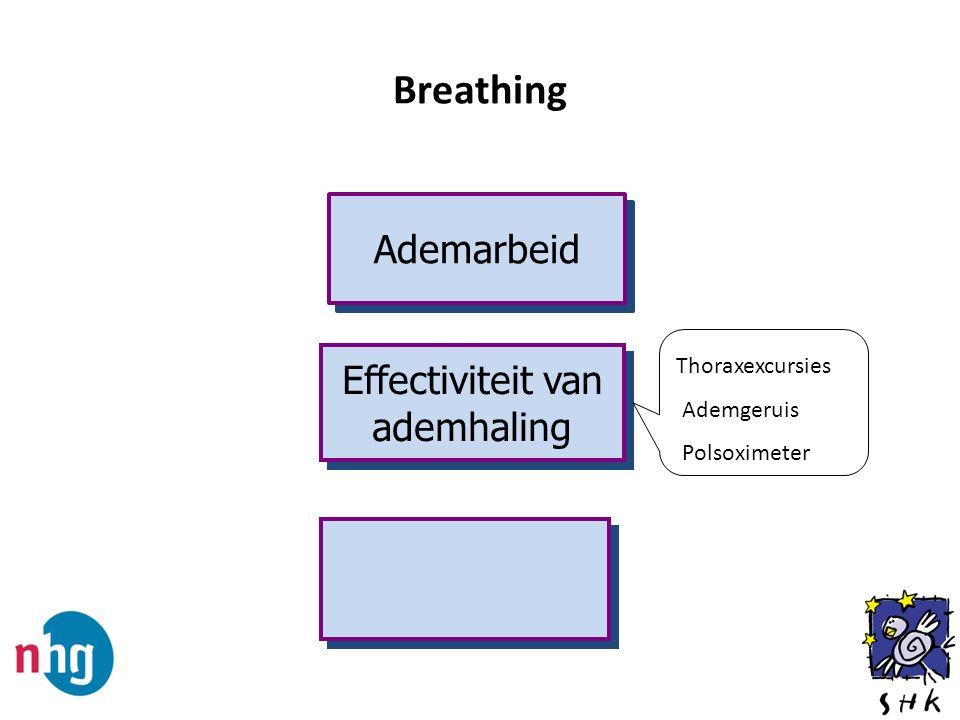 Breathing Ademarbeid Effectiviteit van ademhaling Thoraxexcursies Ademgeruis Polsoximeter