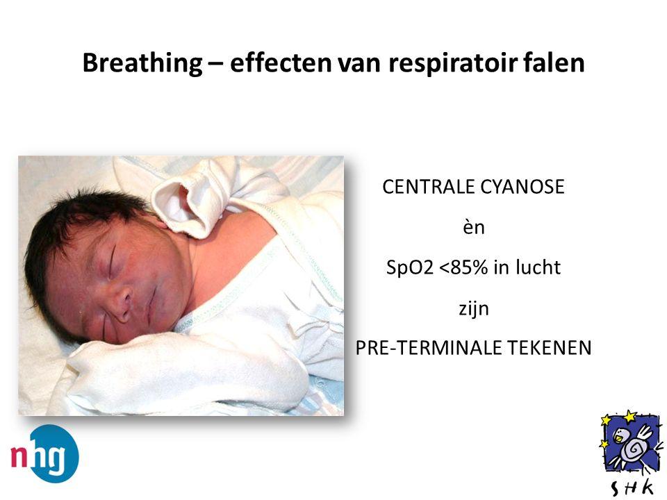 Breathing – effecten van respiratoir falen CENTRALE CYANOSE èn SpO2 <85% in lucht zijn PRE-TERMINALE TEKENEN