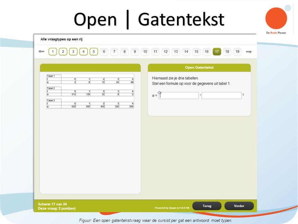 Figuur: Een open gatentekstvraag waar de cursist per gat een antwoord moet typen. Open | Gatentekst
