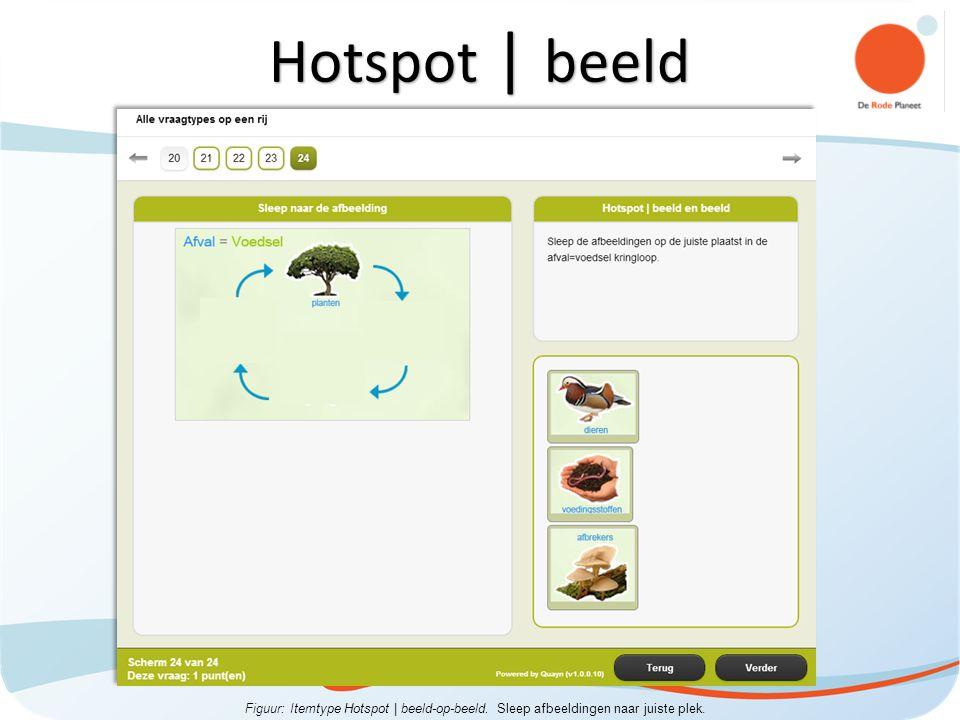 Figuur: Itemtype Hotspot | beeld-op-beeld. Sleep afbeeldingen naar juiste plek. Hotspot | beeld
