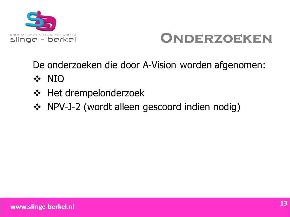 Onderzoeken De onderzoeken die door A-Vision worden afgenomen:  NIO  Het drempelonderzoek  NPV-J-2 (wordt alleen gescoord indien nodig) 13 www.slin