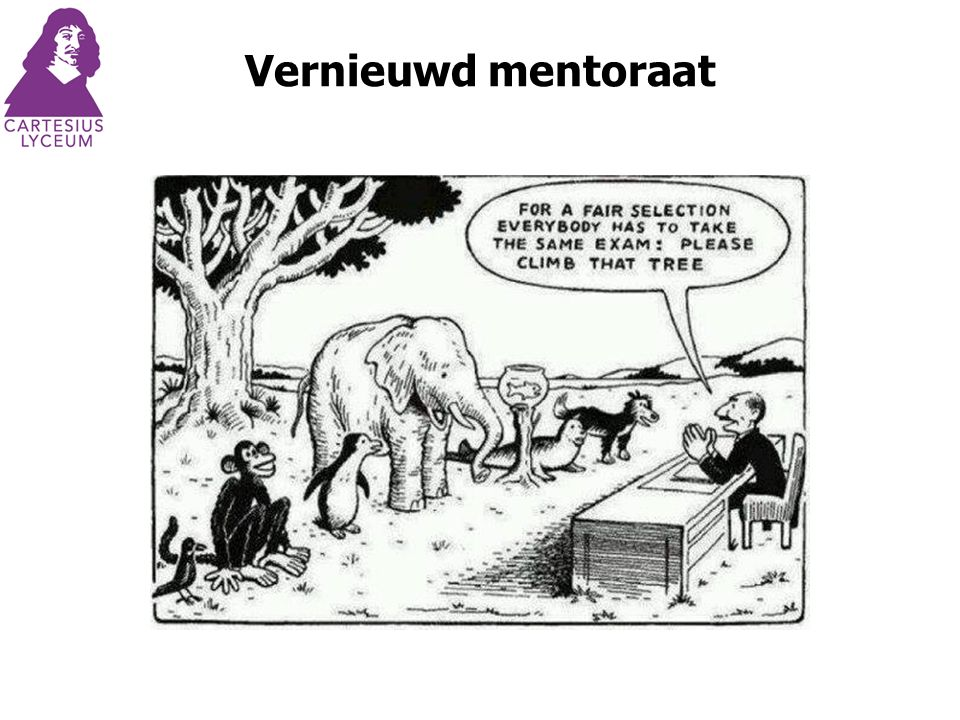 Vernieuwd mentoraat
