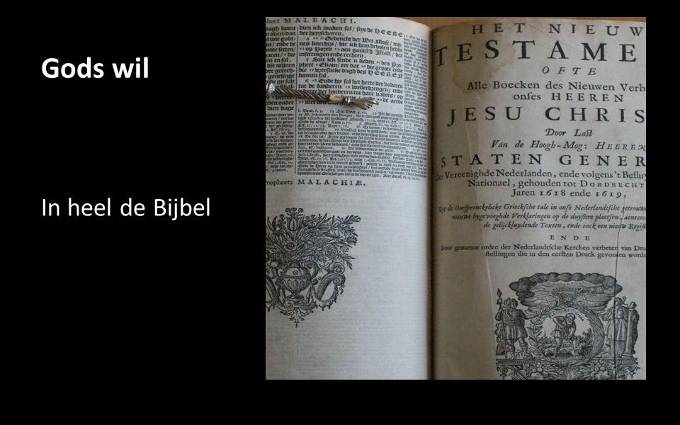 Gods wil In heel de Bijbel