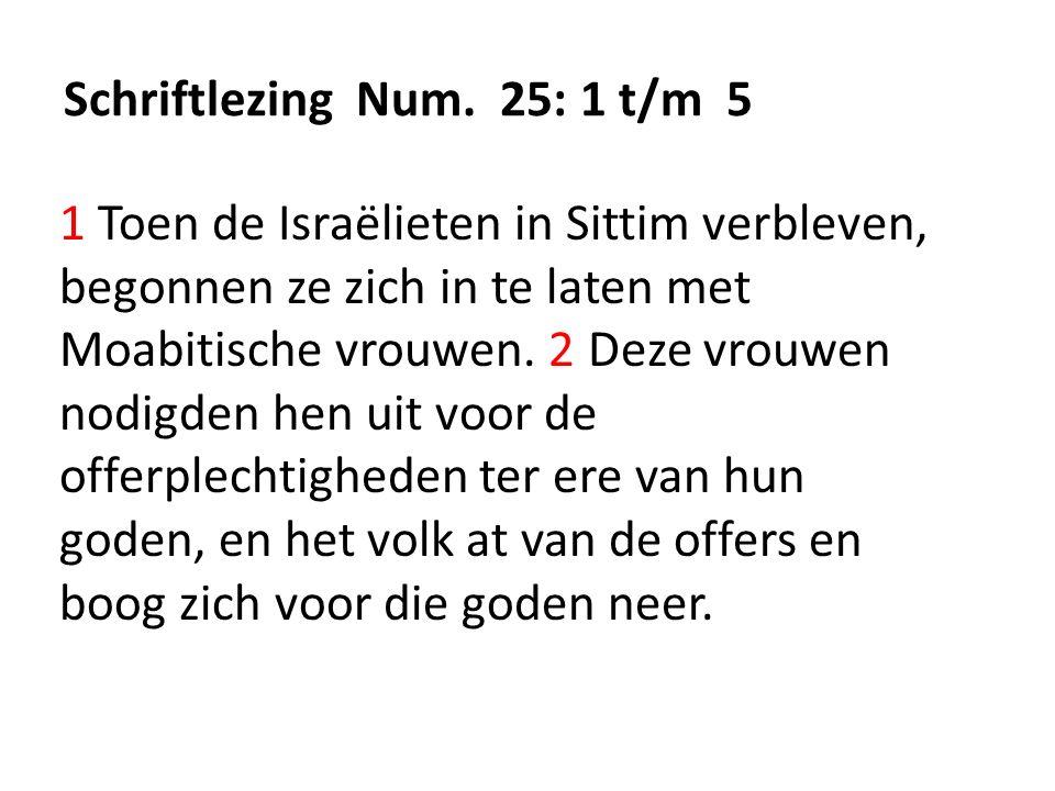 Schriftlezing Num.