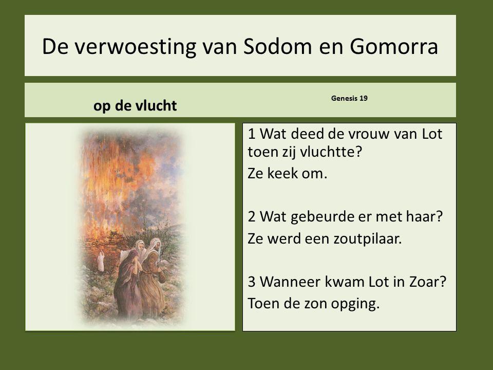 .. De verwoesting van Sodom en Gomorra op de vlucht Genesis 19 1 Wat deed de vrouw van Lot toen zij vluchtte? Ze keek om. 2 Wat gebeurde er met haar?