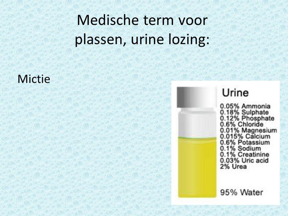 Urine kan je op 5 punten observeren: Noem er 4.