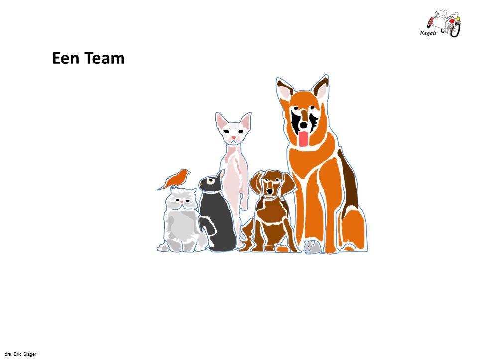 De 5 Disciplines van Systemic Team Coaching © drs. Eric Slager