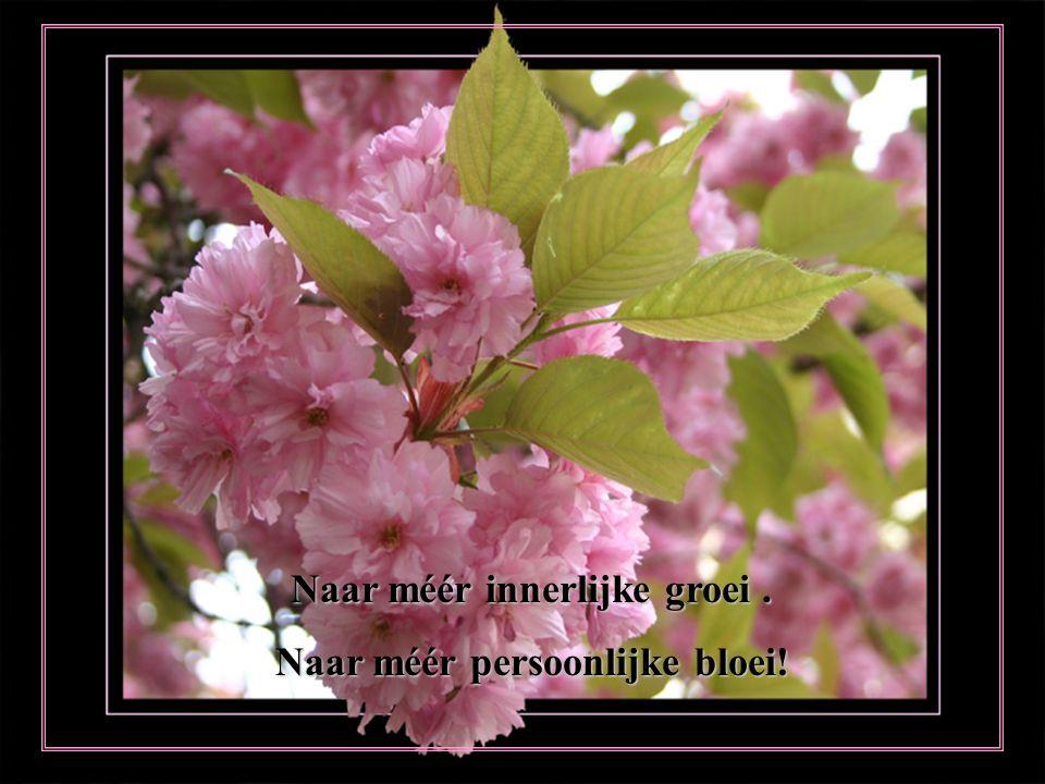 ' T is lente buiten,maak het ook lente van binnen. Vrolijk uitgerust, een nieuwe start kan beginnen!