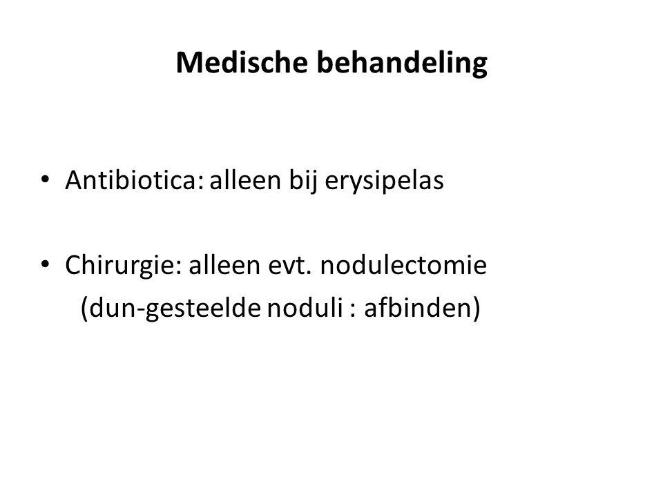 Medische behandeling Antibiotica: alleen bij erysipelas Chirurgie: alleen evt. nodulectomie (dun-gesteelde noduli : afbinden)