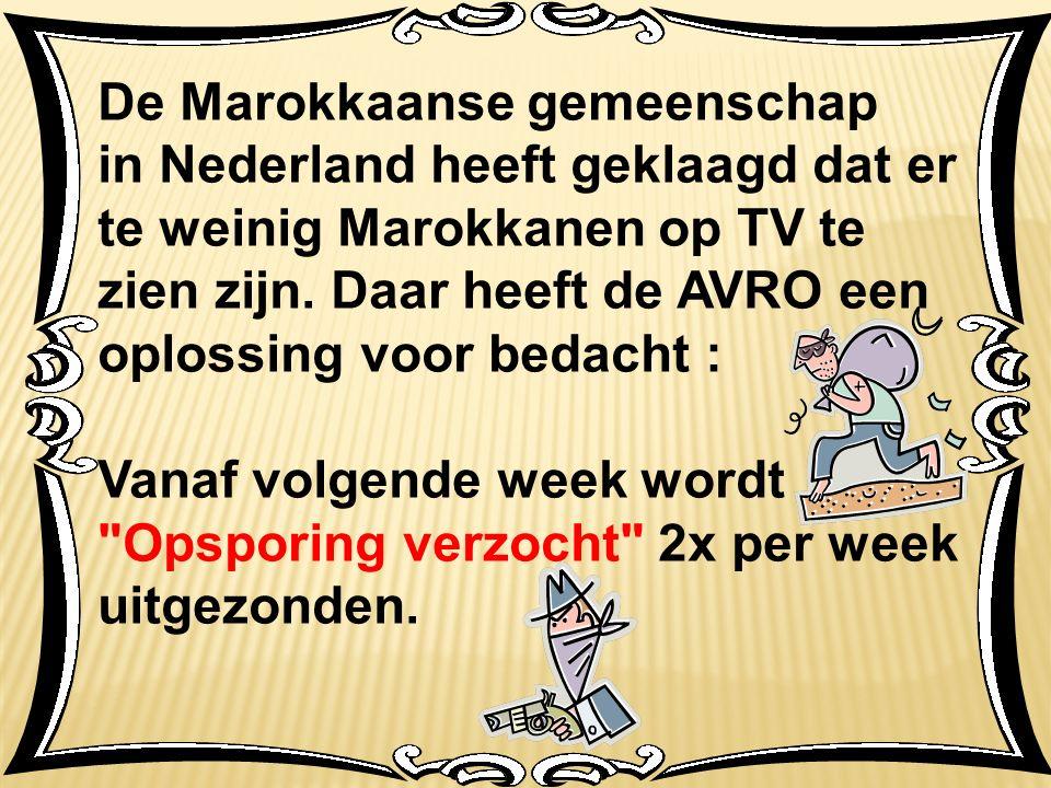 De Marokkaanse gemeenschap in Nederland heeft geklaagd dat er te weinig Marokkanen op TV te zien zijn.