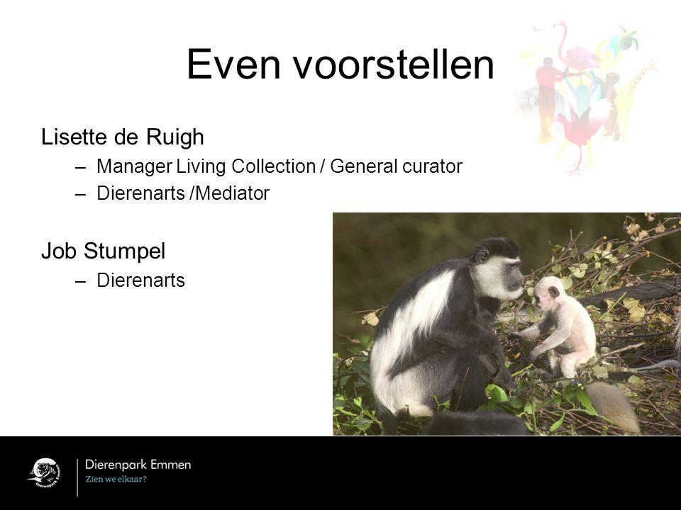 Even voorstellen Lisette de Ruigh –Manager Living Collection / General curator –Dierenarts /Mediator Job Stumpel –Dierenarts