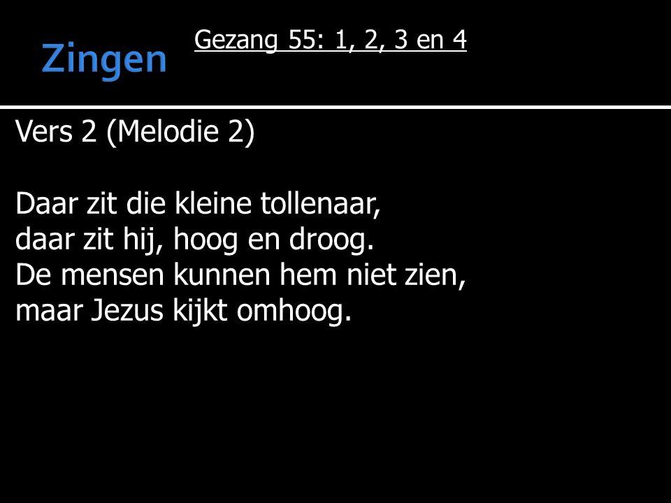 Gezang 55: 1, 2, 3 en 4 Vers 2 (Melodie 2) Daar zit die kleine tollenaar, daar zit hij, hoog en droog. De mensen kunnen hem niet zien, maar Jezus kijk
