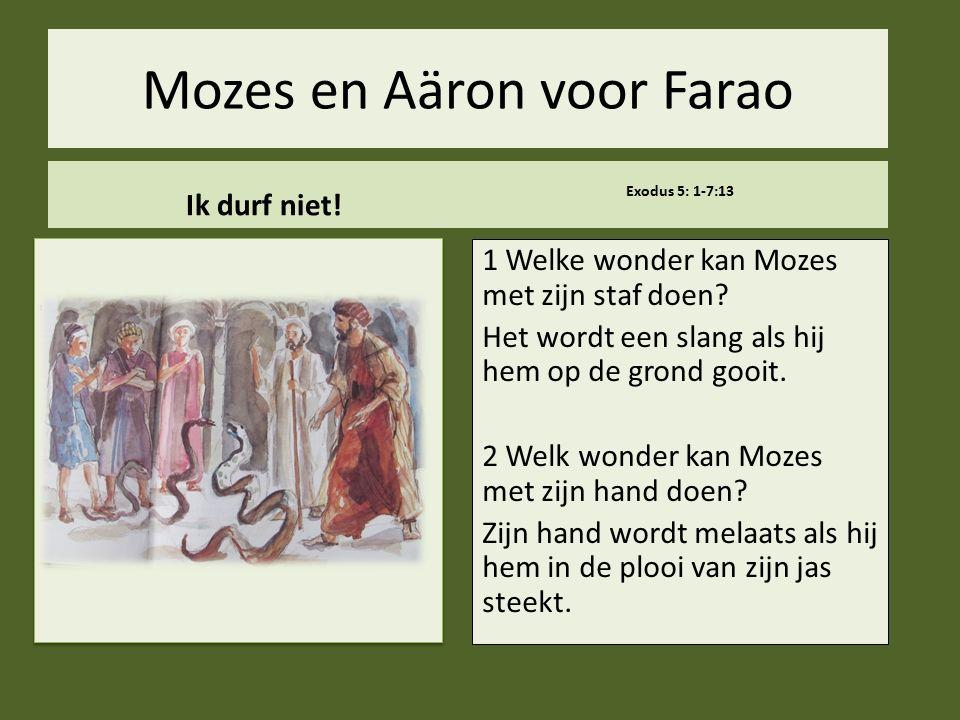 Mozes en Aäron voor Farao Ik durf niet! Exodus 5: 1-7:13 1 Welke wonder kan Mozes met zijn staf doen? Het wordt een slang als hij hem op de grond gooi