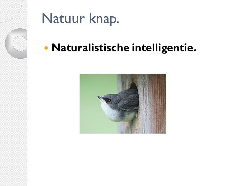 Natuur knap. Naturalistische intelligentie.