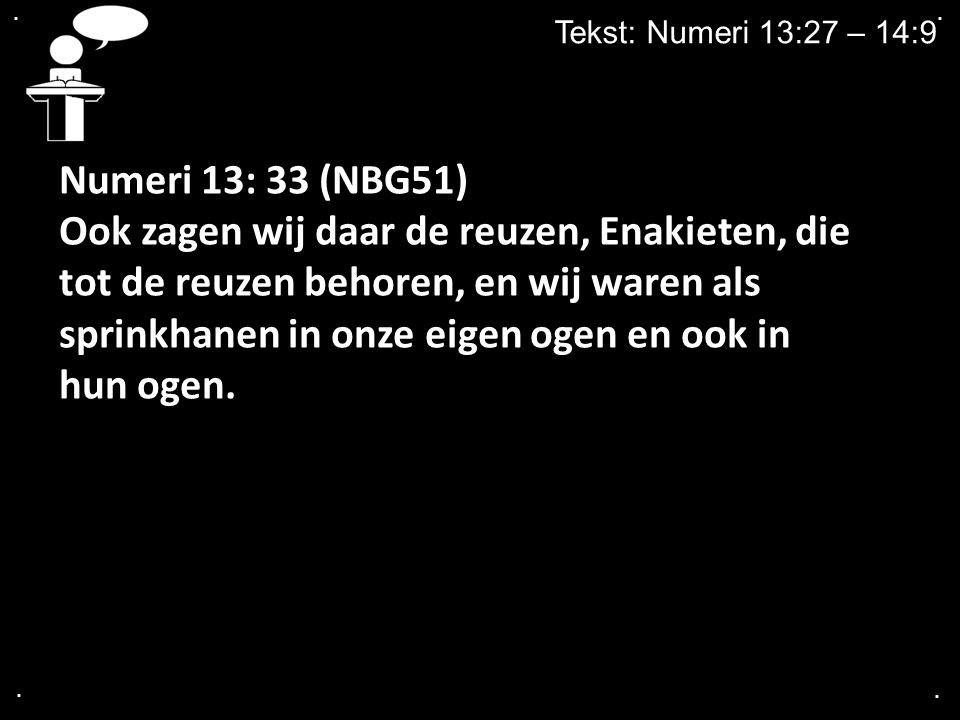 .... Tekst: Numeri 13:27 – 14:9 Numeri 13: 33 (NBG51) Ook zagen wij daar de reuzen, Enakieten, die tot de reuzen behoren, en wij waren als sprinkhanen