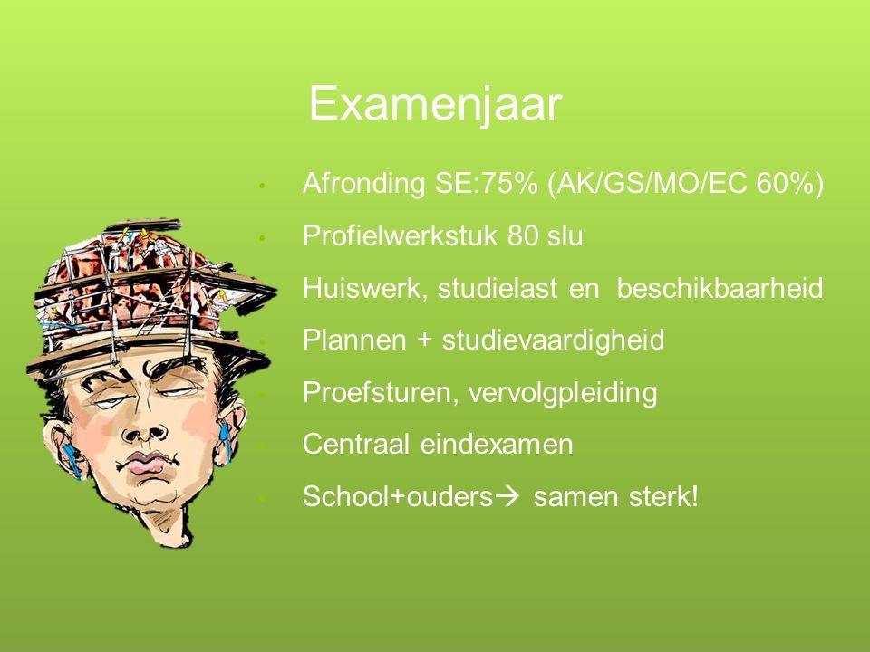 Examenjaar Afronding SE:75% (AK/GS/MO/EC 60%) Profielwerkstuk 80 slu Huiswerk, studielast en beschikbaarheid Plannen + studievaardigheid Proefsturen,