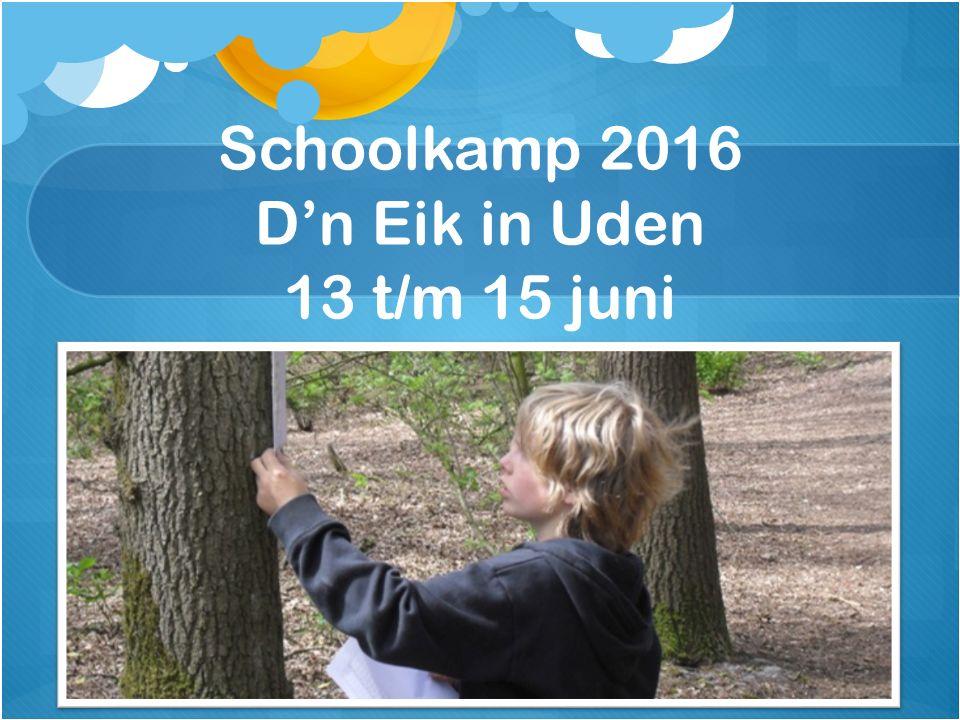 Schoolkamp 2016 D'n Eik in Uden 13 t/m 15 juni
