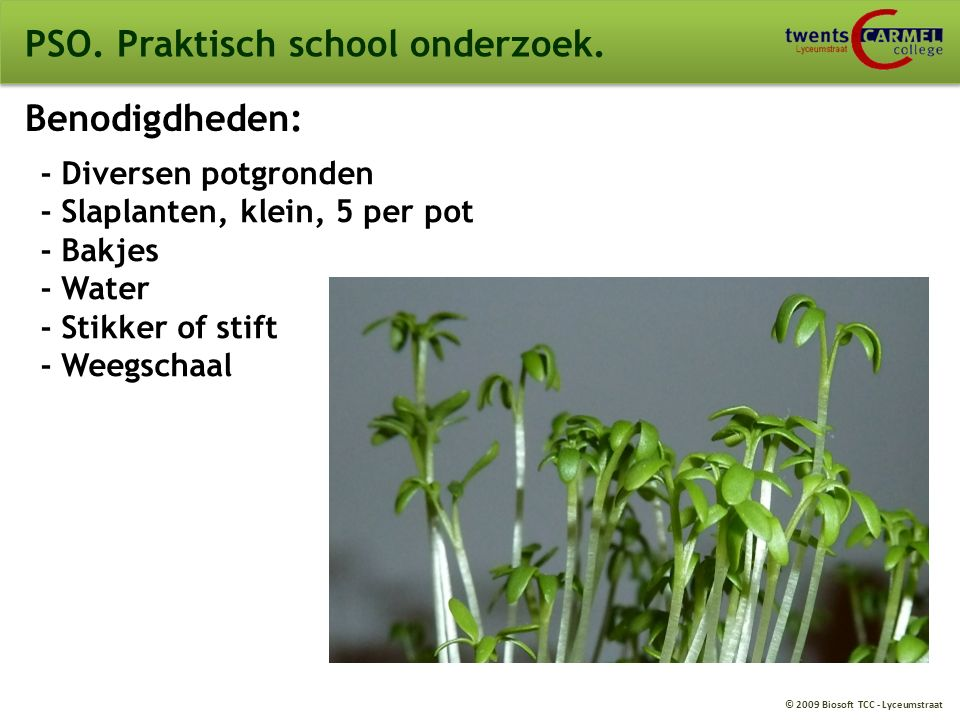 © 2009 Biosoft TCC - Lyceumstraat PSO. Praktisch school onderzoek. Benodigdheden: - Diversen potgronden - Slaplanten, klein, 5 per pot - Bakjes - Wate