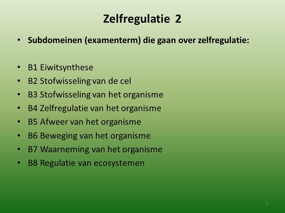 Zelfregulatie 2 Subdomeinen (examenterm) die gaan over zelfregulatie: B1 Eiwitsynthese B2 Stofwisseling van de cel B3 Stofwisseling van het organisme