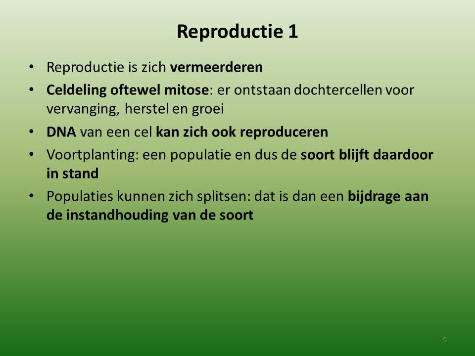 Reproductie 1 Reproductie is zich vermeerderen Celdeling oftewel mitose: er ontstaan dochtercellen voor vervanging, herstel en groei DNA van een cel k