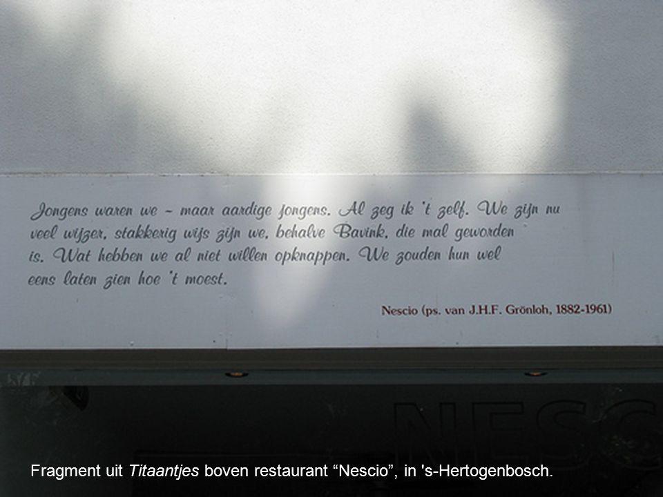 """Fragment uit Titaantjes boven restaurant """"Nescio"""", in 's-Hertogenbosch."""