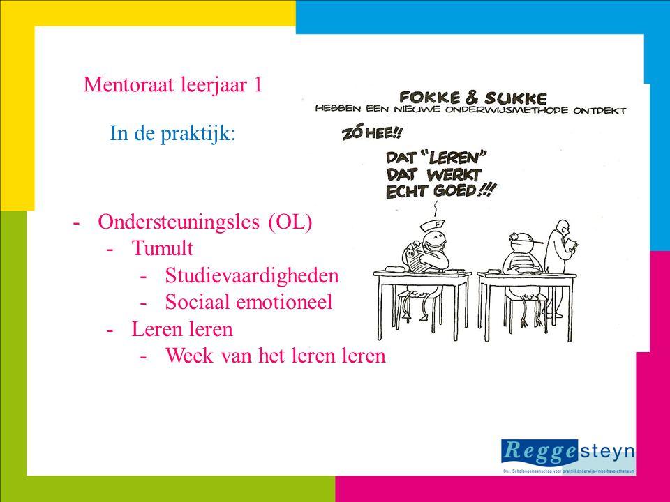 Mentoraat leerjaar 1 In de praktijk: -Ondersteuningsles (OL) -Tumult -Studievaardigheden -Sociaal emotioneel -Leren leren -Week van het leren leren