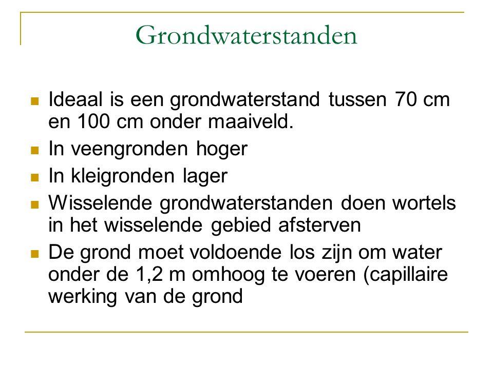 Grondwaterstanden Ideaal is een grondwaterstand tussen 70 cm en 100 cm onder maaiveld.