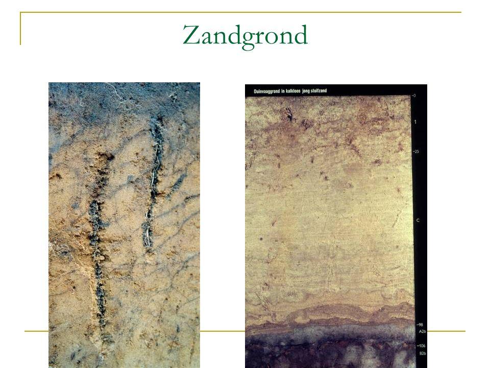 De zandgronden Zandgronden die door wind zijn neergelegd.