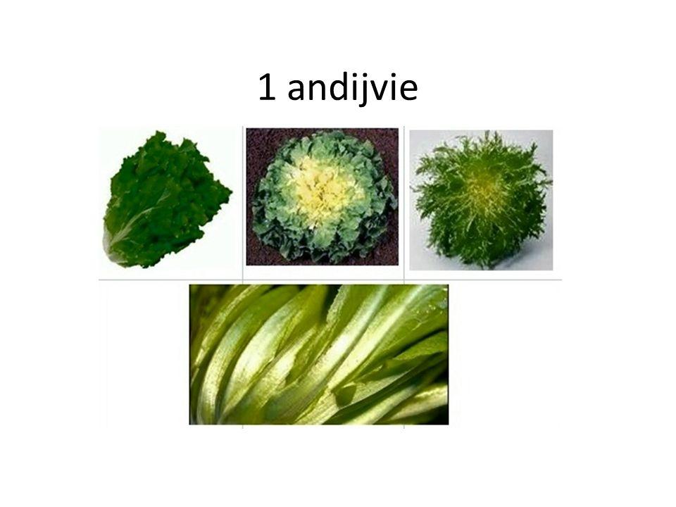 1 andijvie
