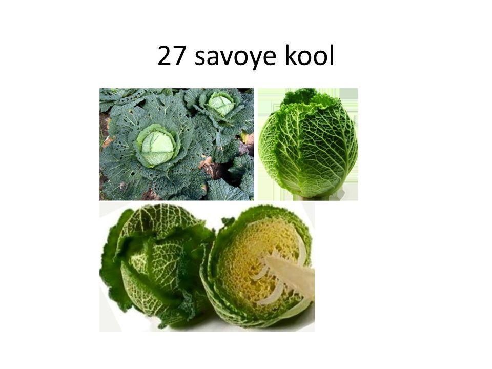 27 savoye kool