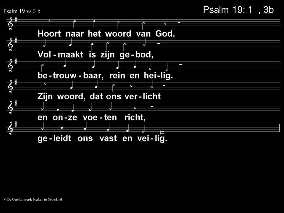 Psalm 19: 1a, 3b