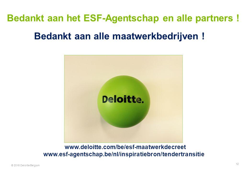 12 Bedankt aan het ESF-Agentschap en alle partners ! Bedankt aan alle maatwerkbedrijven ! www.deloitte.com/be/esf-maatwerkdecreet www.esf-agentschap.b