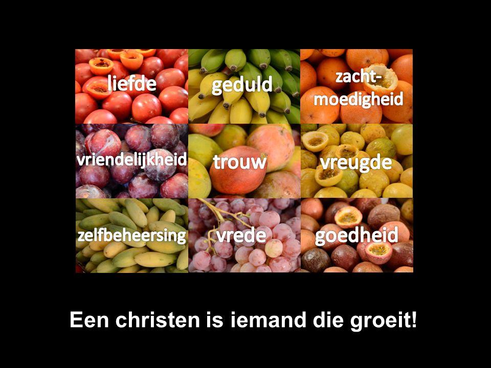 Groei Een echt Bijbels woord Psalm 1 en Psalm 92: – Bomen die vrucht dragen Galaten 5: vrucht van de Geest – Een vrucht groeit, rijpt