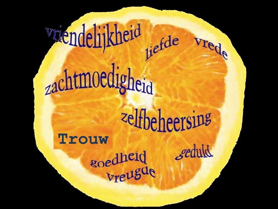 De werken van het vleesDe vrucht van de Geest ontucht, zedeloosheid, losbandigheid, afgoderij, toverij, vijandschap, tweespalt, jaloezie, woede, gekonkel, geruzie, rivaliteit, afgunst, bras- en slemppartijen, en nog meer van dat soort dingen.
