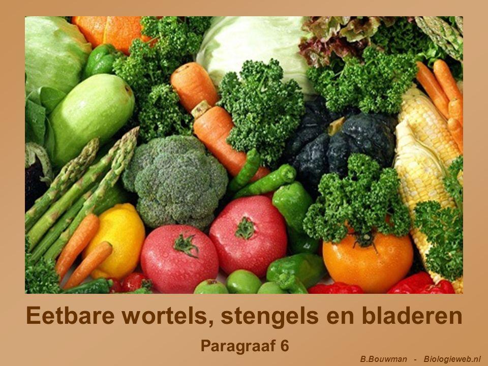 Eetbare planten Veel planten slaan reservevoedsel op in hun wortels.
