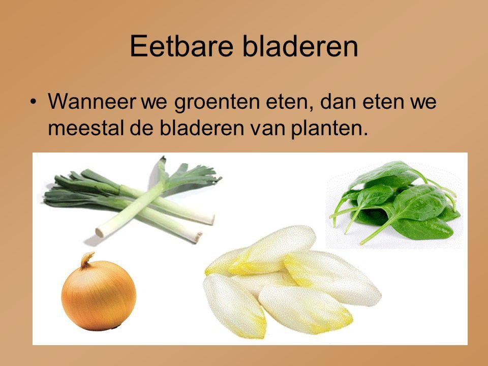 Eetbare bladeren Wanneer we groenten eten, dan eten we meestal de bladeren van planten.