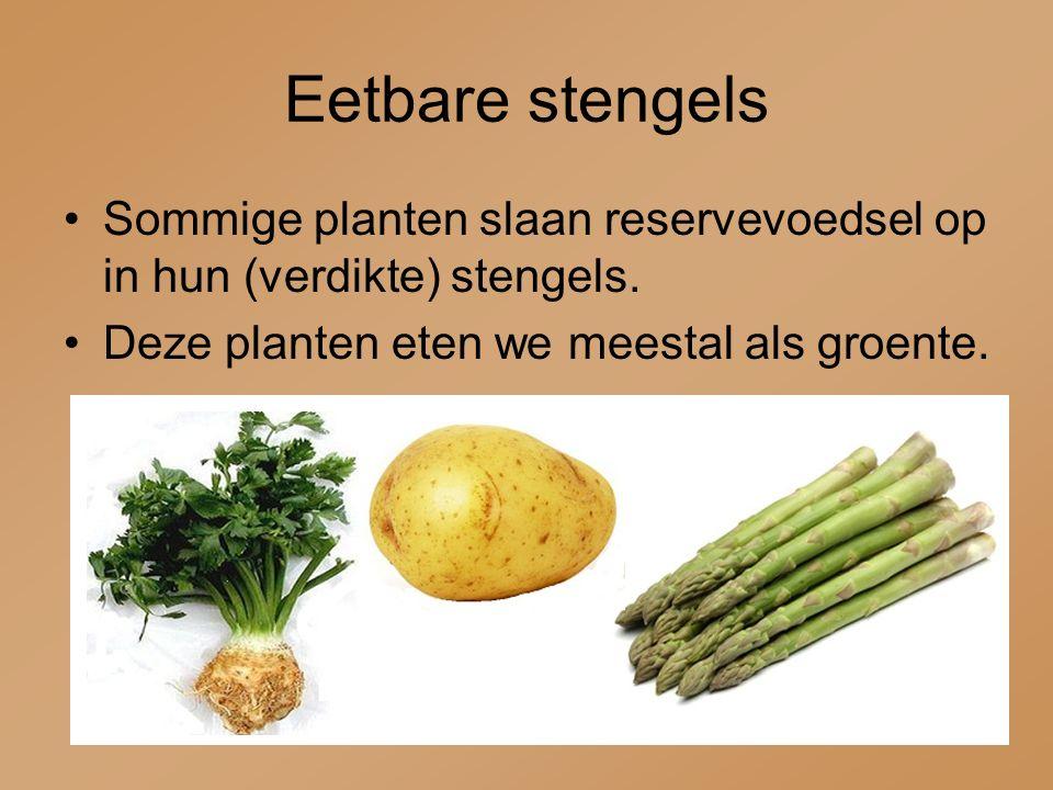 Eetbare stengels Sommige planten slaan reservevoedsel op in hun (verdikte) stengels. Deze planten eten we meestal als groente.