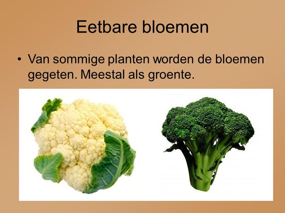 Eetbare vruchten en zaden Van veel planten worden de vruchten en zaden gegeten.