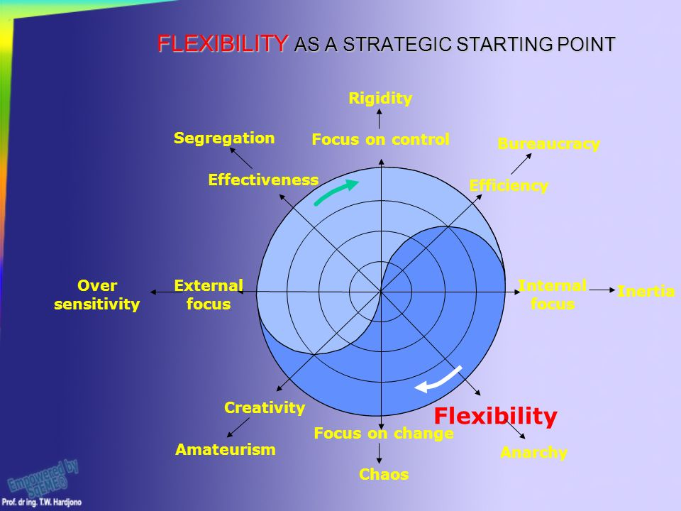 FLEXIBILITY AS A STRATEGIC STARTING POINT Rigidity Focus on control Focus on change Chaos Internal focus External focus Creativity Flexibility Efficiency Effectiveness Amateurism Anarchy Bureaucracy Segregation Inertia Over sensitivity