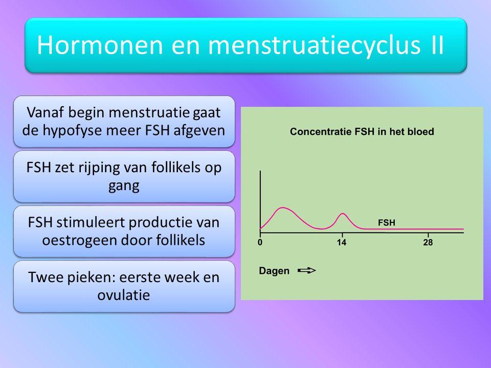 Hormonen en menstruatiecyclus II Vanaf begin menstruatie gaat de hypofyse meer FSH afgeven FSH zet rijping van follikels op gang FSH stimuleert produc