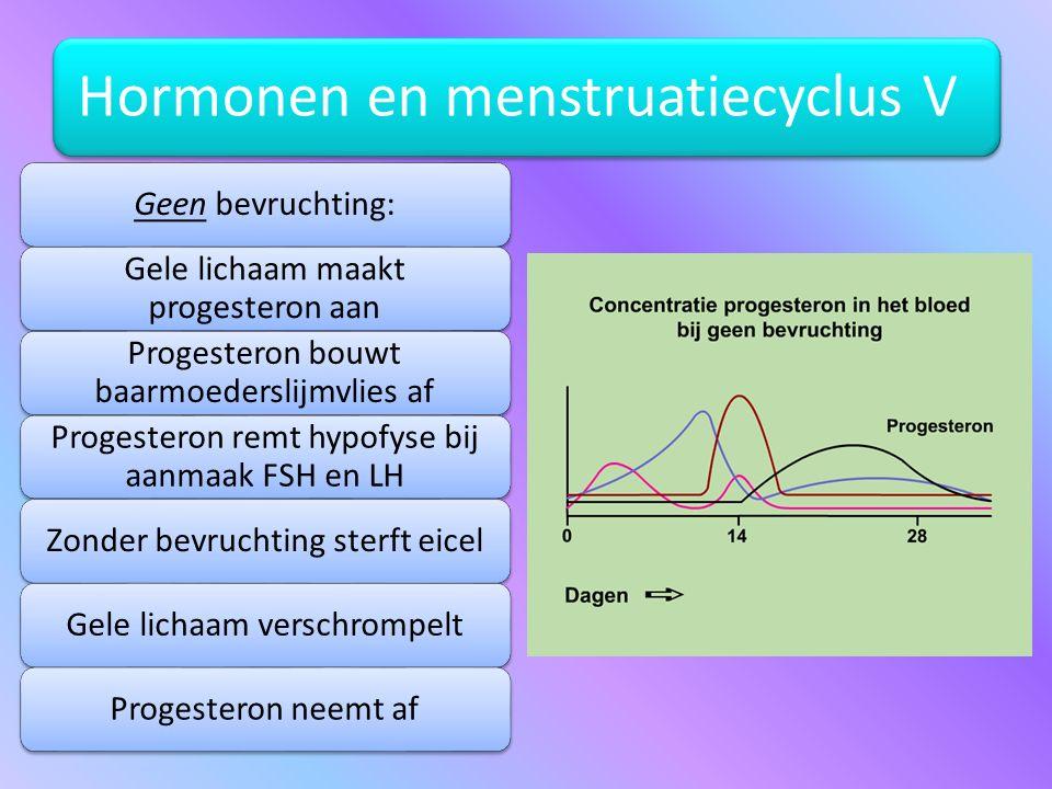 Hormonen en menstruatiecyclus V Geen bevruchting: Gele lichaam maakt progesteron aan Progesteron bouwt baarmoederslijmvlies af Progesteron remt hypofy