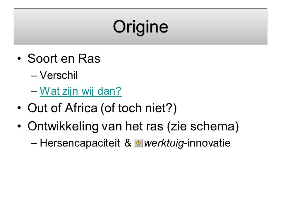 OrigineOrigine Soort en Ras –Verschil –Wat zijn wij dan?Wat zijn wij dan? Out of Africa (of toch niet?) Ontwikkeling van het ras (zie schema) –Hersenc