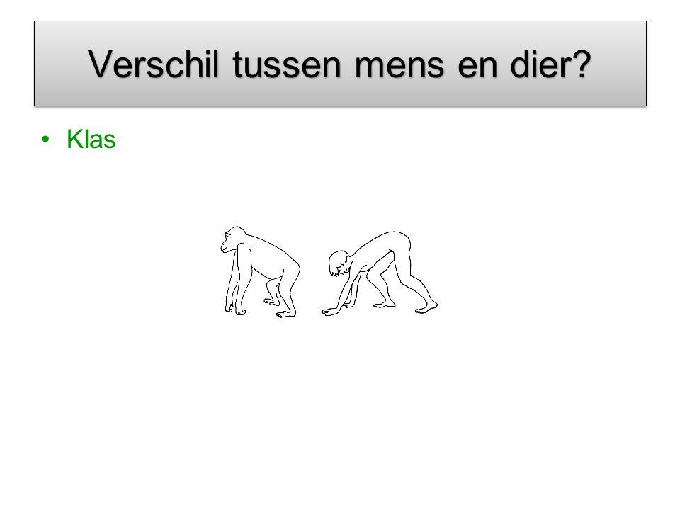Verschil tussen mens en dier? Klas